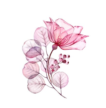 Transparent floral set isolated arrangement of big pink rose flower, berries, leaves, branches in pastel grey, violet, purple, vintage ornament, wedding design, stationery card print Stockfoto