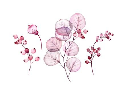 Watercolor Transparent floral set isolated on white collection of leaves, berries, branches collection in pastel pink, grey, violet, purple, botanical illustration wedding design elements collection