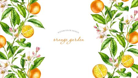 Horizontal frame Orange fruit branch with flowers realistic botanical watercolor banner: citrus tree leaves isolated artwork on white hand drawn fresh tropical food design arrangement for text label