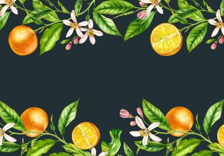 Orange fruit branch horizontal frame with flowers realistic botanical watercolor banner: citrus tree leaves top bottom borders on navy black hand painted exotic food design text label stationery