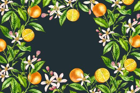 Horizontal frame Orange fruit branch with flowers realistic botanical watercolor banner: citrus tree leaves wreath artwork on dark grey black hand drawn exotic food design text label stationery Stockfoto