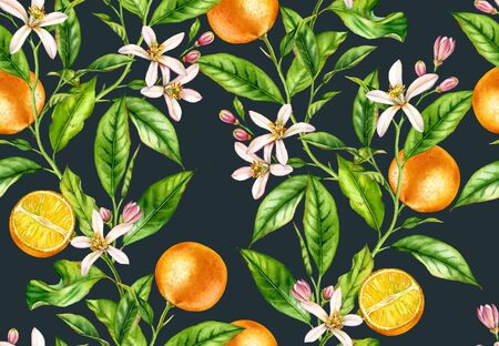 Orange fruit branches. Seamless pattern with flowers realistic botanical floral illustration on dark blue background hand painted