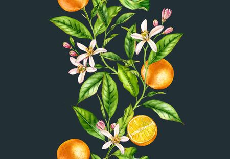 Orange fruit branches. Seamless vertical border with flowers realistic botanical floral illustration on dark blue background hand painted