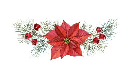 Christmas watercolor arrangement. Hand painted illustration with poinsettia flower, pine tree, red berries. Winter holiday background isolated on white for greeting card and wrapping paper 写真素材