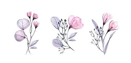 Watercolor floral set. Transparent flowers and leaves. Collection of three bouquets isolated on white. Botanical illustration for wedding design, greeting cards