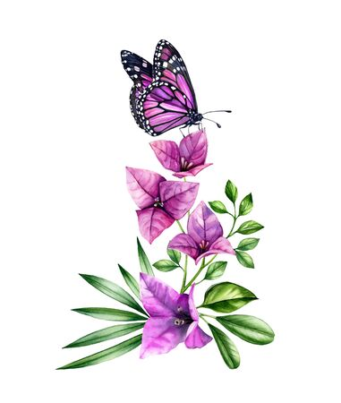 Watercolor bougainvillea branch with butterfly. Purple flowers, violet monarch and palm leaves. Hand painted floral tropical bouquet. Botanical illustrations isolated on white