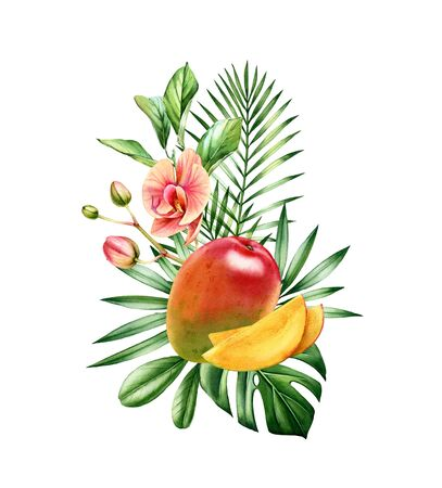 Watercolor mango fruits. Vertical bouquet with juicy fruits, tropical orchid flowers and palm leaves. Botanical hand drawn illustration for cards, print, label design Stok Fotoğraf