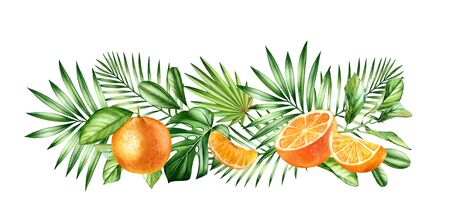Watercolor orange fruits. Horizontal border with juicy fruits and tropical leaves. Botanical realistic hand drawn illustration Stok Fotoğraf