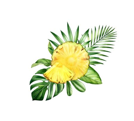 Watercolor ananas fruits on monstera leaf. Tropical arrangement with sliced fruits and palm leaves. Realistic botanical hand drawn illustration Stok Fotoğraf