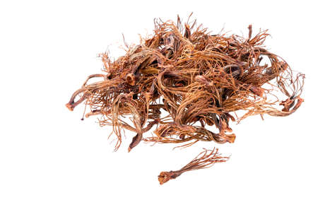 androecium: BOMBAX CEIBA LINN - dried androecium on white background for food Stock Photo
