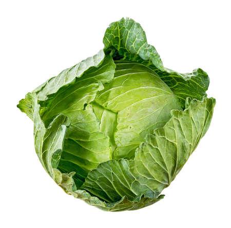 cabbage: Col aislada en el fondo blanco