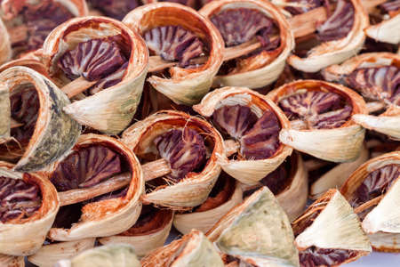 areca: Dry areca nut or betel nut or areca catechu ready for chewing - Thai traditional snack