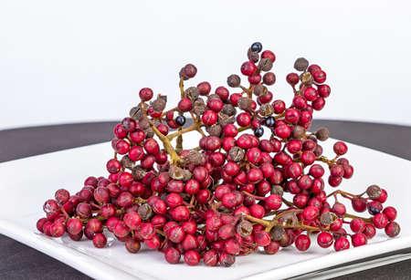 Shiny-Leaf Prickly Ash, Scientific name is (Zanthoxylum nitidum (Roxb.) DC.) herb fruits use for food on white dish 版權商用圖片