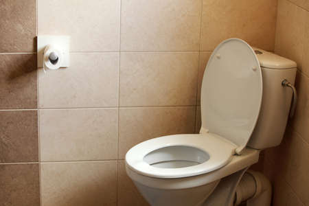 wall of bowel: toilet bowl, home flush toilet and paper Stock Photo