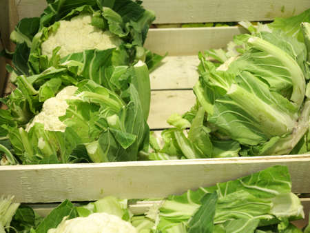 Fresh cauliflowers on the market stand cabbage vegetable Stock Photo - 17742545