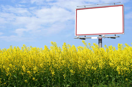 Blank white billboard with space for your advertisement  in yellow oilseed rape and the blue sky
