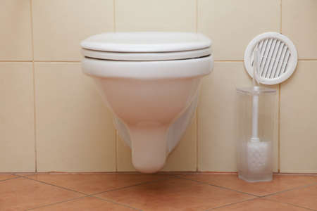 toilet bowl, home flush toilet Stock Photo - 18154945