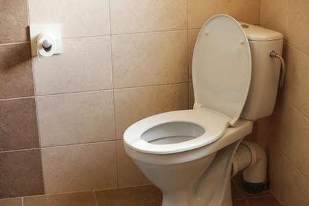 toilet bowl, home flush toilet and paper Stock Photo - 18166508