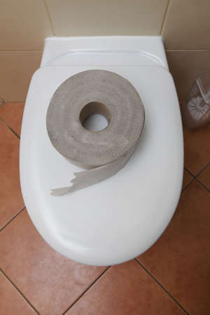 Roll of bathroom tissue. Toilet paper on a toilet bowl. photo
