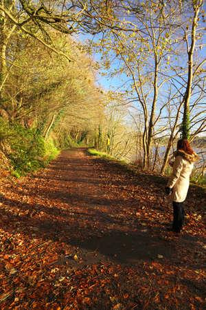 Autumn Pathway photo