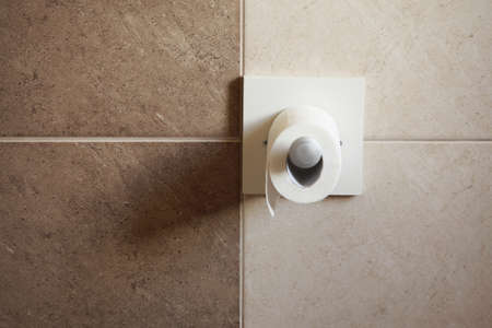 toilet paper roll hanging in bathroom with beige ceramic Stock Photo - 20051914