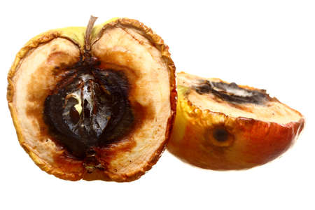 Rotten apple halves on white background. Food waste.