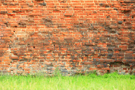 Grungy destroyed background of a red brick wall texture with green grass floor photo