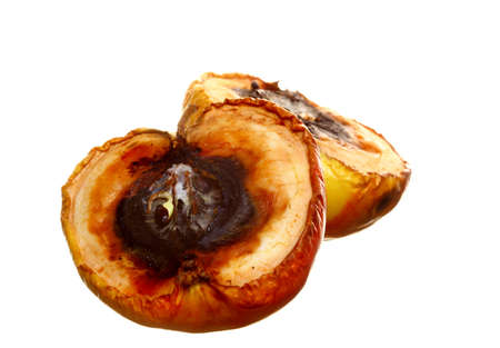 uneatable: Rotten apple halves on white background. Food waste.