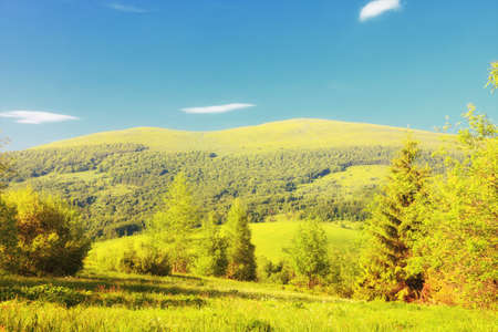 Hills beautiful summer landscape in the mountains blue sky Bieszczady Poland photo