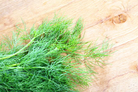 bunch fresh green dill herb on wooden old table Stock Photo - 24234954
