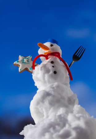 Little happy christmas snowman in blue screw top as hat red scarf and with fork gingerbread cake cookie star outdoor.  photo