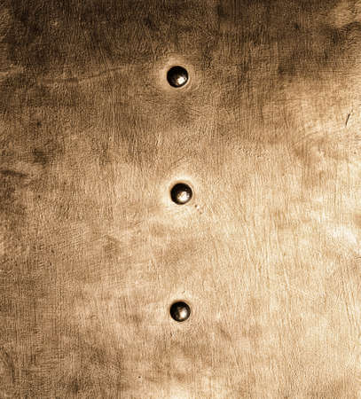 stell: Closeup of grunge gold brown metal plate with rivets and screws  texture