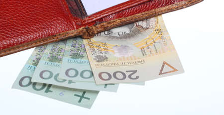 economy and finance wallet with money paper currency polish stock