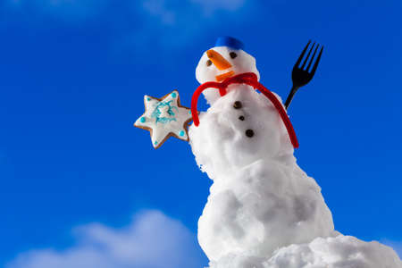 Little happy christmas snowman in blue screw top as hat red scarf and with fork gingerbread cake cookie star outdoor  Winter season seasonal specific  Blue sky background  photo