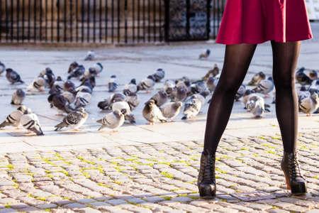 pantimedias: La moda de otoño. Piernas femeninas se alza en los zapatos de moda elegantes botas de calle al aire libre de la ciudad con las palomas