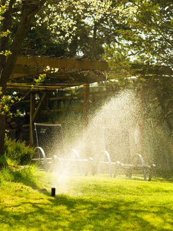 irrigation equipment: Gardening. Lawn sprinkler spraying water over green grass. Irrigation system - technique of watering in the garden. Stock Photo