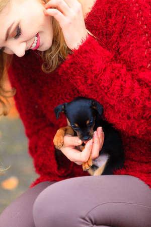 puppy love: Las mascotas y personas, la adopci�n de mascotas. Mujer jugando con su peque�o perro de mascota al aire libre, abrazando amorosamente abraza a su cachorro. Foto de archivo
