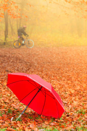 Autumn concept. Healthy active lifestyle. Red umbrella on autumn leaves background. Foggy misty day photo