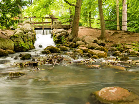 forest stream: beautiful waterfall in woods green forest, stream in oliva park gdansk danzig poland. Natural landscape.