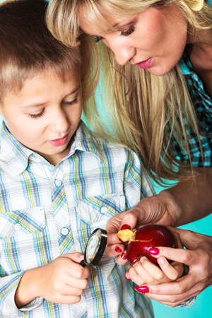 lupa: Children development concept. Mother with son little boy examining apple looking through a magnifying glass. Stock Photo
