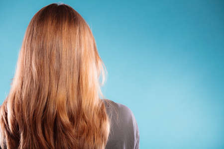 loose hair: Beautiful female brown long healthy loose hair back rear view on blue background