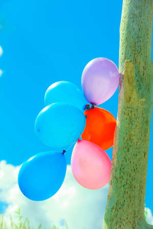 anniversary beach: Concept of love in summer, freedom and wedding honeymoon. Colorful balloon chain in the sky outdoor