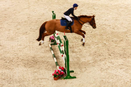 equitation: Equitation. Riding competition. Show jumping, horse and rider over jump Stock Photo