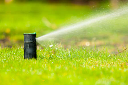 garden landscaping: Gardening. Lawn sprinkler spraying water over green grass. Irrigation system - technique of watering in the garden. Stock Photo