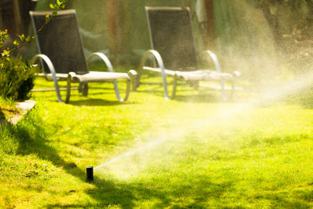 watering garden: Gardening. Lawn sprinkler spraying water over green grass. Irrigation system - technique of watering in the garden. Stock Photo