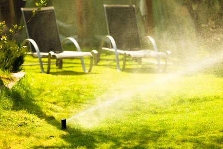 irrigation equipment: Gardening. Lawn sprinkler spraying water over green grass. Irrigation system - technique of watering in the garden. Stock Photo