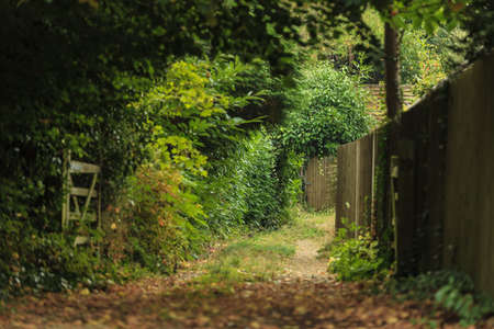 Nature summer landscape. Countryside view and rustic gate in England, UK.