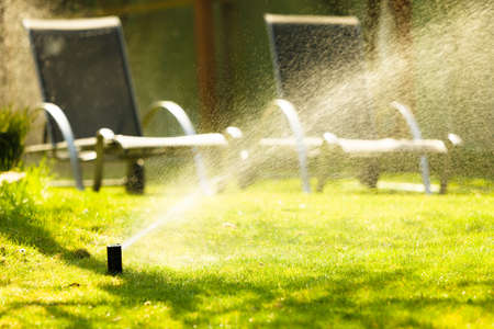 lawn sprinkler: Gardening. Lawn sprinkler spraying water over green grass. Irrigation system - technique of watering in the garden. Stock Photo
