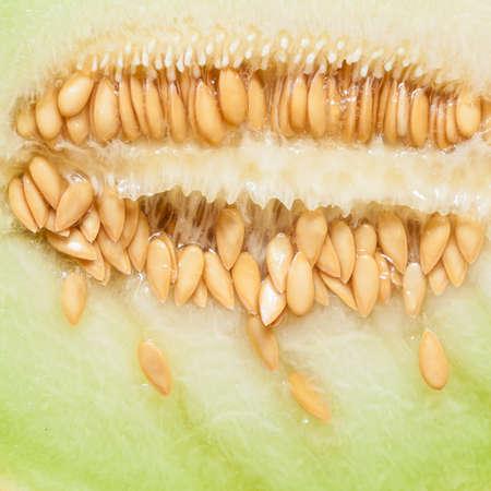 pips: Close-up van meloen met pitten als voedsel achtergrond. Fruit, voeding en gezonde voeding. Stockfoto