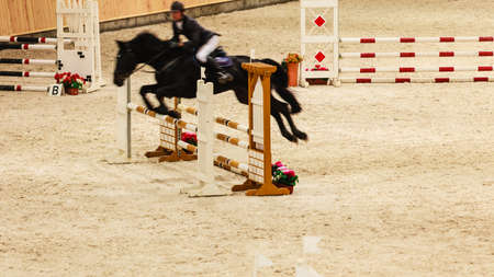 equitation: Equitation. Riding competition. Show jumping, horse and rider over jump Editorial